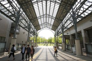 首都大学東京で骨盤障害を負わせたX先生は誰で名前は?授業中の仙腸関節痛を組織的に隠ぺいか?