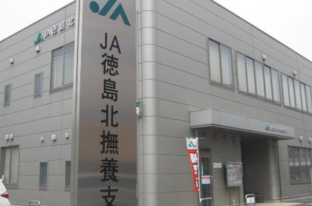 JA徳島北撫養支所(信用共済課)の40代元課長は誰,名前と顔画像は?着服不祥事