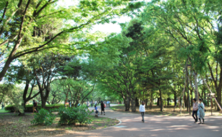 【ノーマスクピクニック】主催者は誰で開催場所は砧公園?